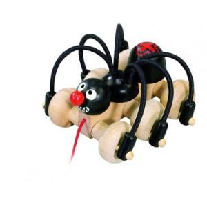 Černý pavouk